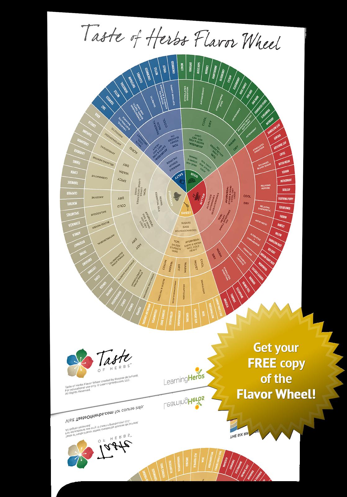 Taste of Herbs Flavor Wheel